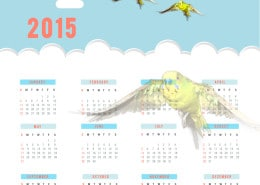 Wellensittichkalender 2015