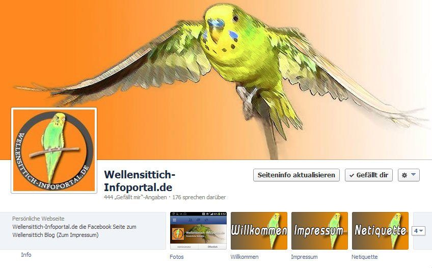 Wellensittiche auf Facebook